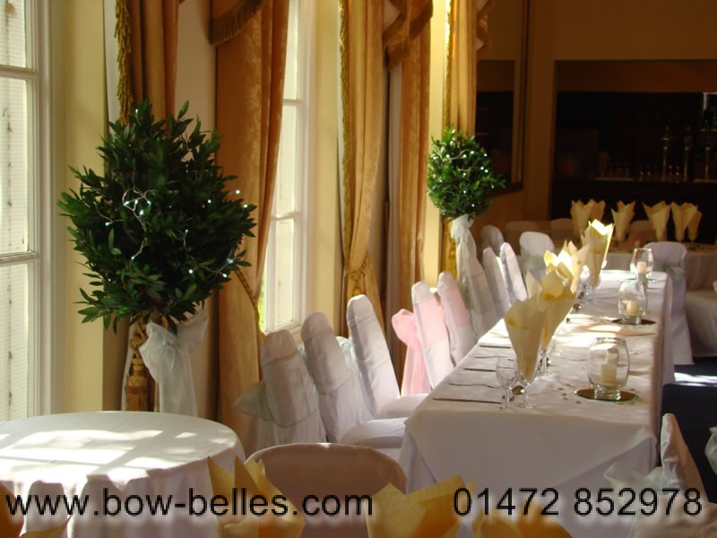 Wondrous Wedding Chair Cover Hire Machost Co Dining Chair Design Ideas Machostcouk